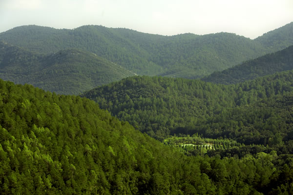 Camping Bassegoda paisaje