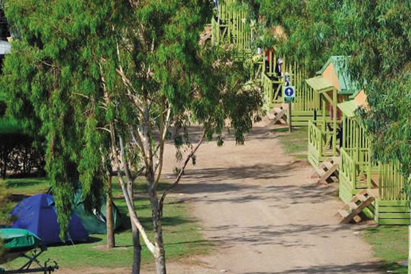 Camping Eucaliptus calle