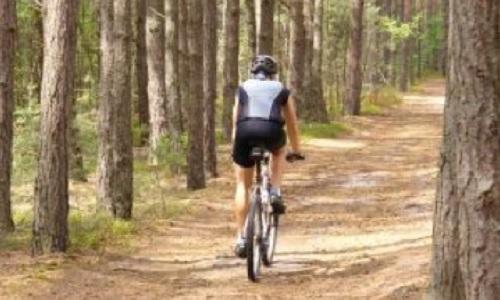 En camping à vélo: VTT, route, randonnée
