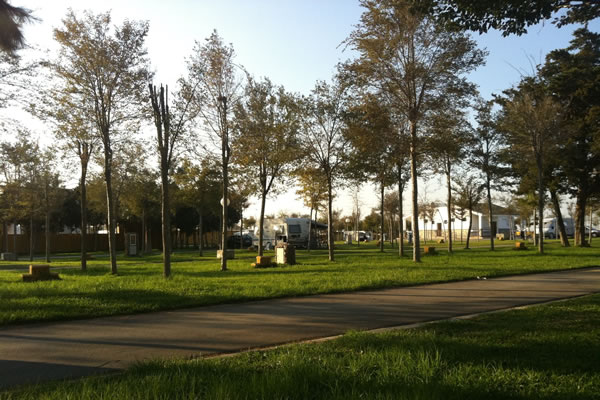 Camping Roche parcelas