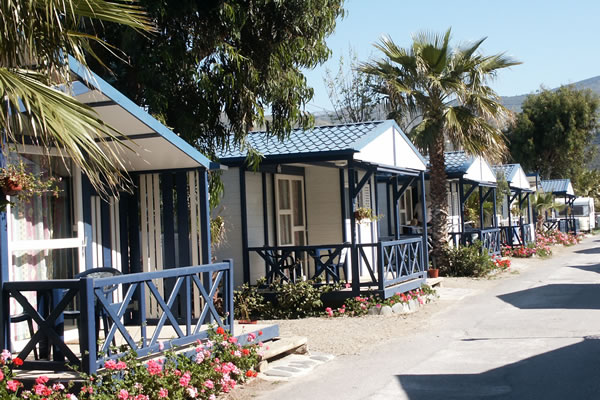 Camping Don Cactus bungalows