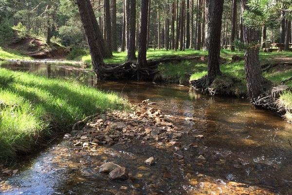 /campings/espana/castilla-la-mancha/guadalajara/Orea/camping-orea-1516809233-xl.jpg