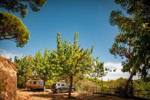 /campings/espana/catalunya-cataluna/barcelona/costa-de-barcelona-norte/RocaGrossa/120161766-3337822152949980-3770897984954608997-o.jpg