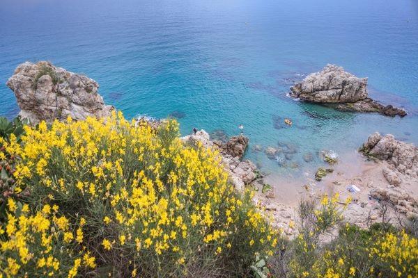 /campings/espana/catalunya-cataluna/barcelona/costa-de-barcelona-norte/RocaGrossa/o5a1062.jpg