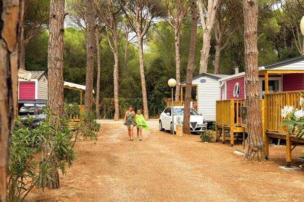 /campings/espana/catalunya-cataluna/girona/costa-brava-centro/Neptuno/neptuno-9.jpg
