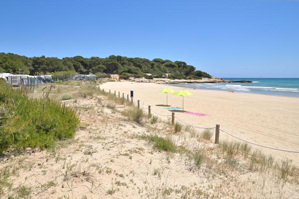 Camping Las Palmeras Tarragona playa camping