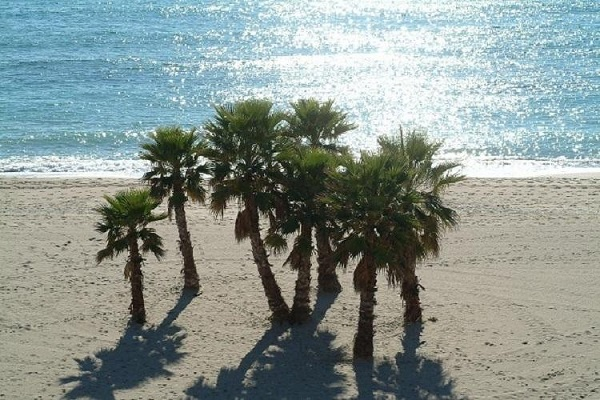campings/espana/catalunya-cataluna/tarragona/costa-dorada-sur/camping-sant-salvador-1482948289-xl.jpg