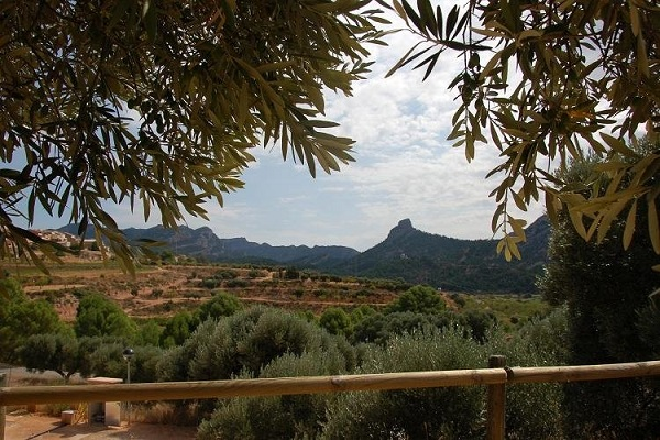 campings/espana/catalunya-cataluna/tarragona/tarragona-interior/camping-terra-alta-1483474343-xl.jpg