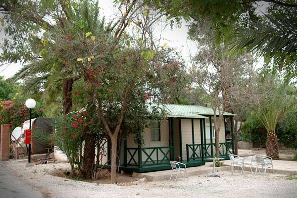 campings/espana/comunidad-valenciana/alicante/costa-blanca-sur/las-palmeras-crevillente-2.jpg