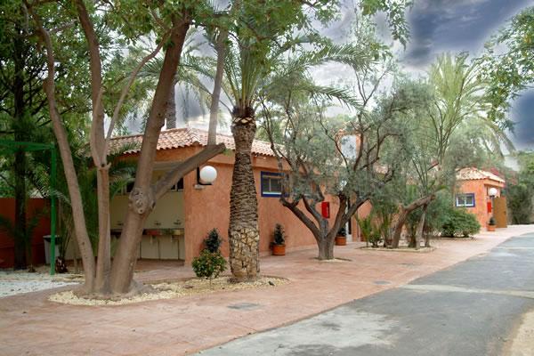 campings/espana/comunidad-valenciana/alicante/costa-blanca-sur/las-palmeras-crevillente-4.jpg