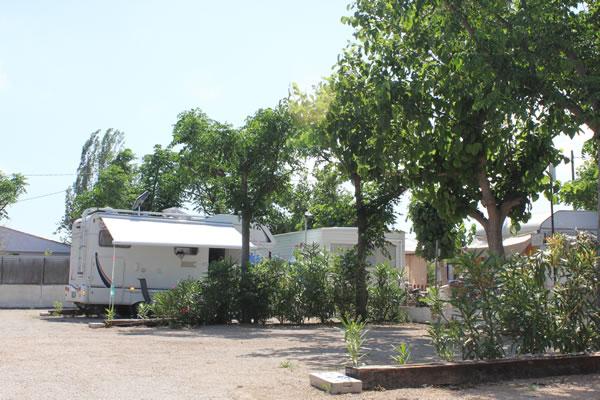 campings/espana/comunidad-valenciana/castellon/costa-del-azahar/alegria-del-mar-3.jpg