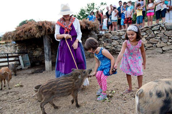 campings/espana/madrid/madrid/sierra-norte/MonteHoliday/granja-para-nios-en-la-sierra-de-madrid.jpg