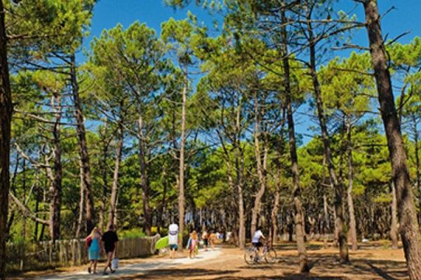 /campings/francia/aquitania/landas/LeVivier/camping-le-vivier-1500908340-xl.jpg