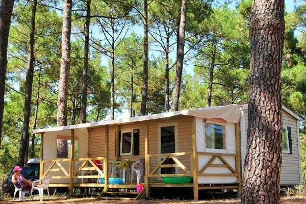 /campings/francia/aquitania/landas/LeVivier/camping-le-vivier-1556790030-xl.jpg