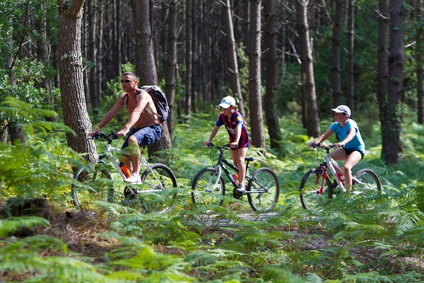 /campings/francia/aquitania/landas/LouPignada/piste-cyclable-1.jpg