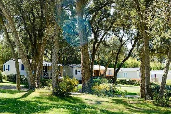 campings/francia/aquitania/landas/camping-lac-ondres-1483056919-xl.jpg