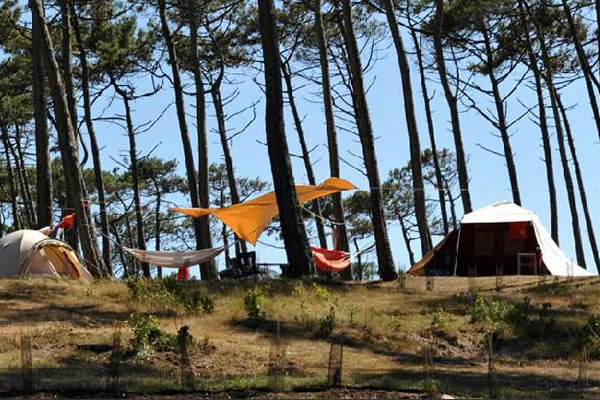 Camping Le Saint Martin Moliets parcela tienda