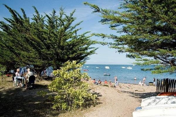 /campings/francia/paises-del-loira/vandea/HuttopiaNoirmoutier/camping-noirmoutier-1482955458-xl.jpg