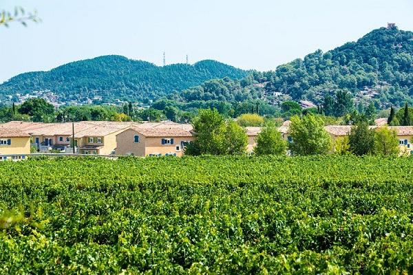 /campings/francia/provenza-alpes-costa-azul/var/ClosdesOliviers/camping-d-1515061502-xl.jpg