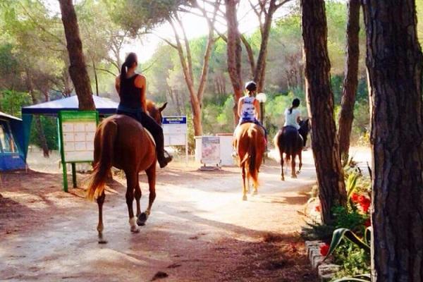 campings/italia/cerdena/camping-bella-sardinia-1510238576-xl.jpg