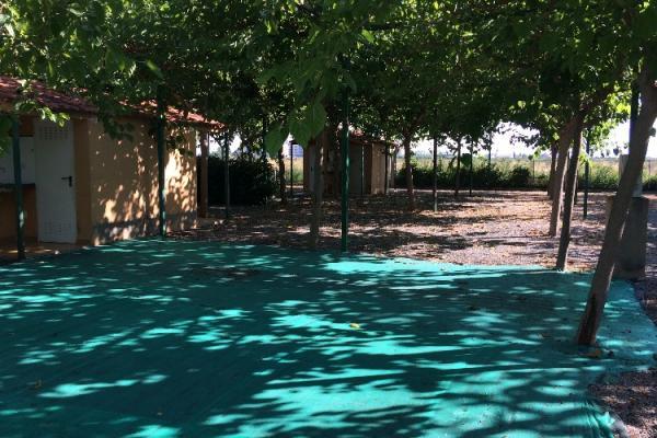 /campings/espana/comunidad-valenciana/castellon/costa-del-azahar/los-naranjos-3.jpg