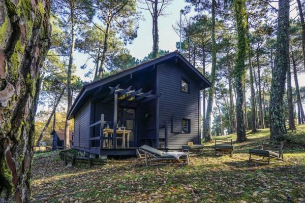 /campings/francia/aquitania/landas/Slow Village Biscarrosse/1.jpg