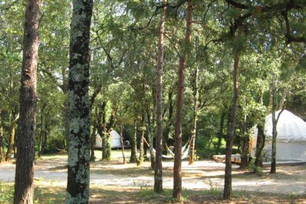 /campings/francia/rodano-alpes/ardeche/Mille Etoiles/camping-mille-etoiles-1482955799-xl.jpg