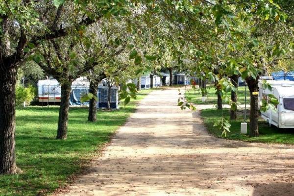 campings/espana/catalunya-cataluna/girona/costa-brava-centro/castell-d-aro-3.jpg