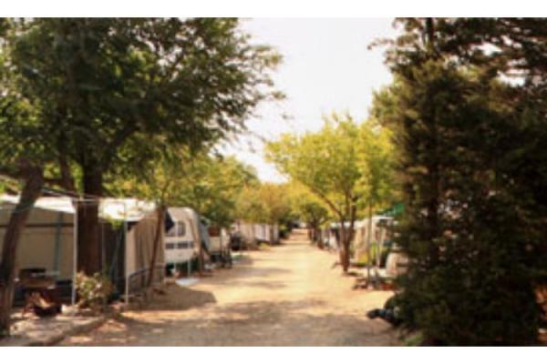 campings/espana/catalunya-cataluna/girona/costa-brava-norte/vell-emporda-1.jpg