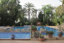 Internacional Las Palmeras, Crevillente (Alicante)