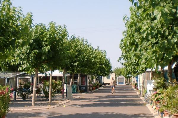 campings/espana/comunidad-valenciana/castellon/costa-del-azahar/monmar-4.jpg