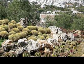 Jardin botanique de cactus à Casarabonela