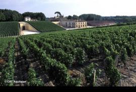 El vino de Burdeos