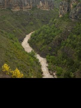 Senderismo en Sierra Cebollera