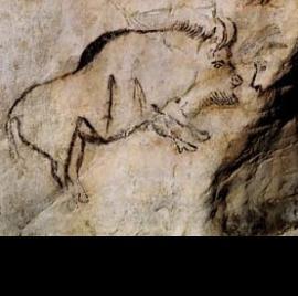 Cueva de Niaux