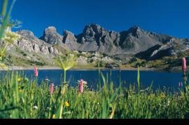El Parque Nacional de Mercantour protege a una…